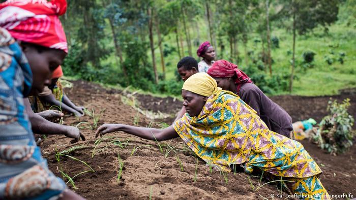 Mundo se afasta da meta de eliminar a fome -